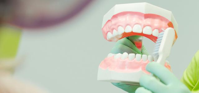 Zahnbürste Gebiss